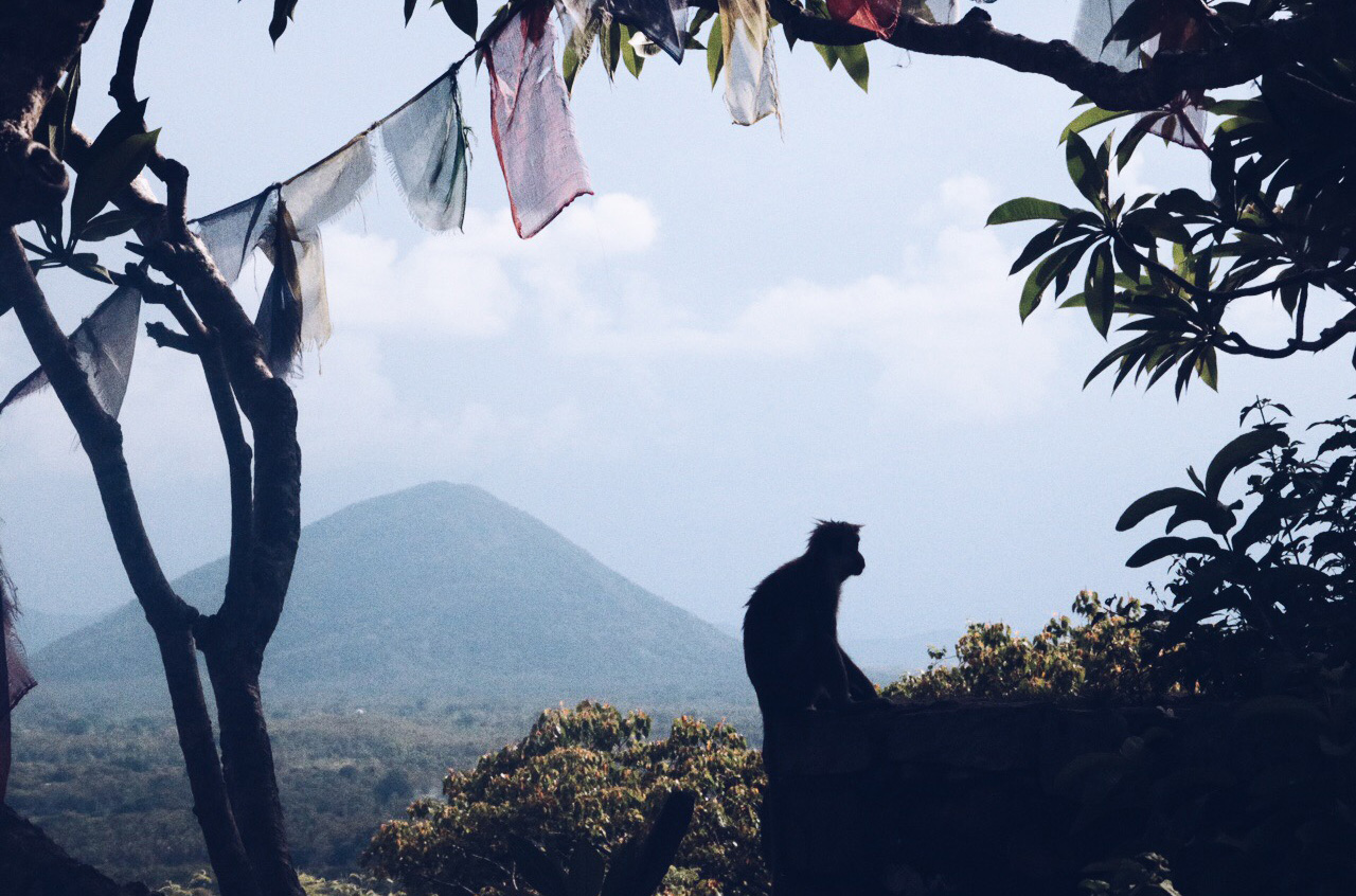 sri lanka voyage conseils avis circuit 8 9 jours maldives colombo malé