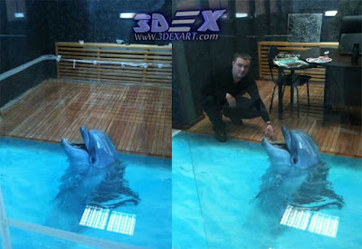 3d dolphin flooring, 3d dolphin tile, 3d epoxy floor mural
