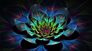 Beautiful lotus flower hd wallpapers images. Latest colorful lotus flower lovely image and pictures gallery