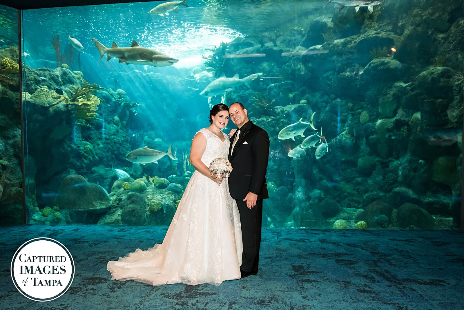 Jayme Lewis 06 17 Tampa Wedding Photography The Florida Aquarium