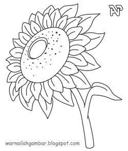 Mewarnai Bunga Matahari 1 Mewarnai Gambar