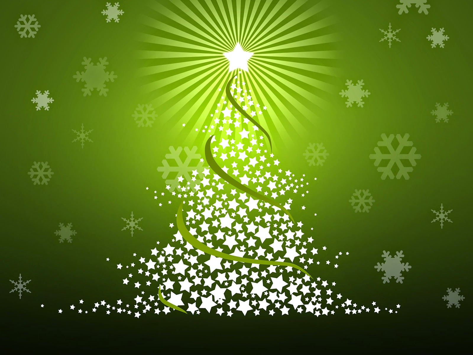 Lhasa Apso Blog: Merry Christmas