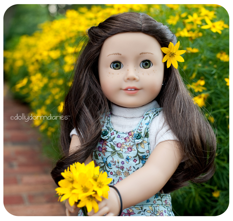 Meet our American Girl doll, Faith. Read 18 inch doll diaries at our American Girl Doll House. Visit our 18 inch dolls dollhouse!