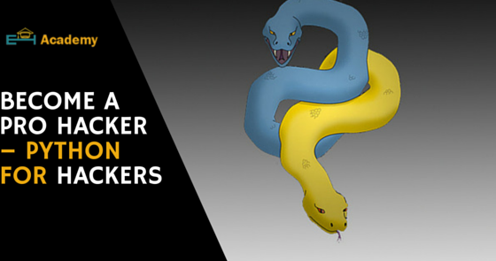 Become A Pro Hacker Python For Hackers The World Of It