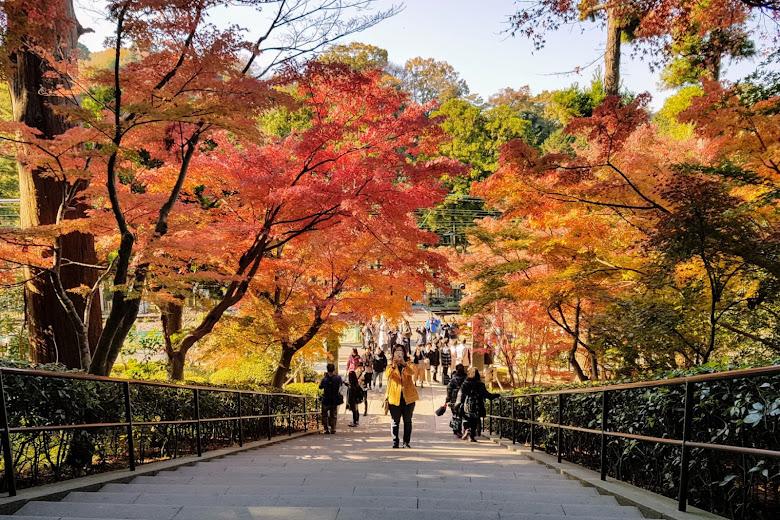 円覚寺前的秋色