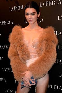Supermodel Kendall Jenner robbery case
