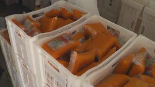 Prefeitura de Picuí doará polpas de frutas para população carente e entidades