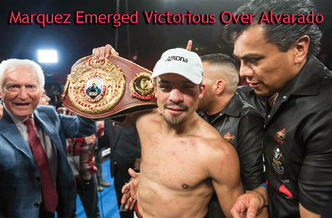 Juan Manuel Marquez Emerged Wins Over Mike Alvarado