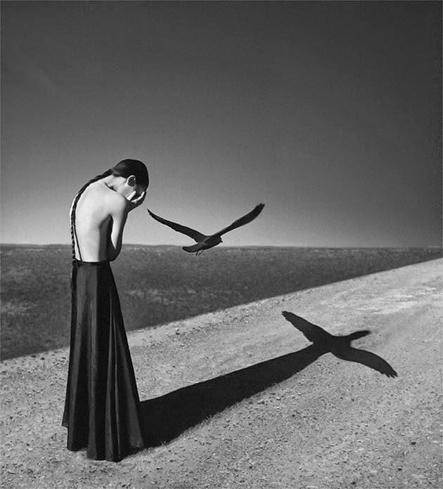 Perplejidades del mundo poético, Francisco Acuyo, Ancile