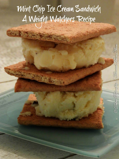 Mint Chip Ice Cream Sandwiches A Weight Watchers Recipe