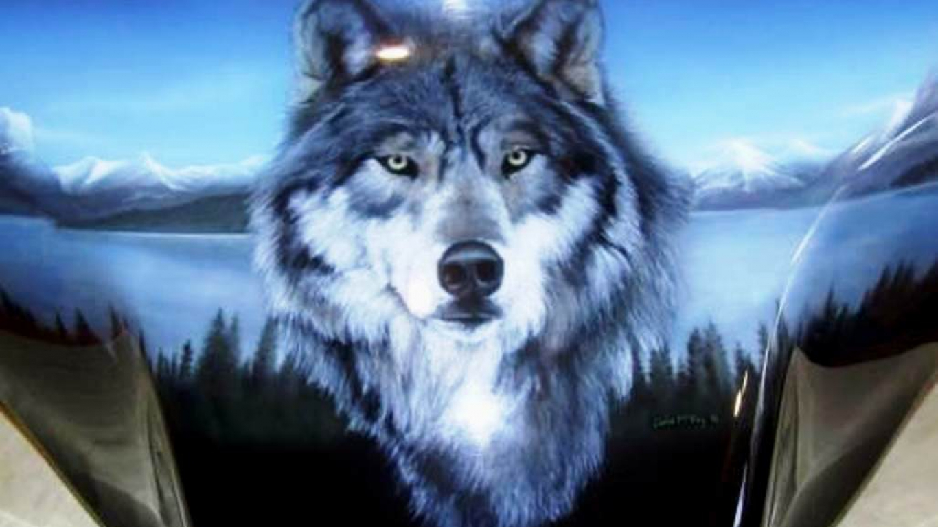 Hd Wolf Backgrounds: Wallpaper: HD Wolf Wallpapers