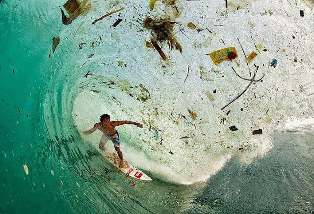 Resultado de imagem para limpeza lixo pacifico