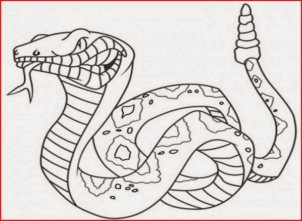 snakes coloring pages coloring.filminspector.com