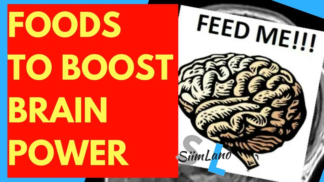 Makanan Penambah Ketajaman Otak, Daya Ingat, dan Kecerdasan