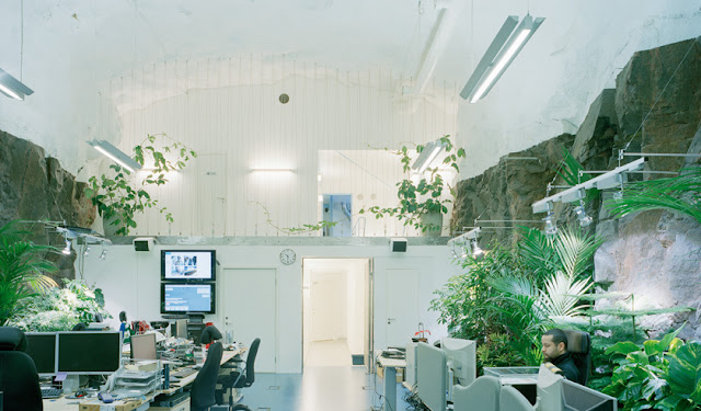 Photo of an underground office with computers and lots of vegetation