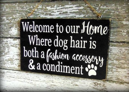 Welcome to our home Where dog hair is both a fashion accessory & a condiment.