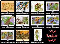 خريطة تونس الجيولوجية المبسطة La Carte Géologique simplifie de la Tunisie   خريطة تونس الجيولوجية La Carte Géologique de la Tunisie  خريطة جبل منصور الجيولوجية La Carte Géologique de Djebl Mansour   خريطة المكثار الجيولوجية Carte Géologique du Maktar   خريطة قعفور الجيولوجية Carte Géologique du Gaafour  خريطة سليانة الجيولوجية Carte Géologique de Seliana  خريطة أبه كسور الجيولوجية Carte Géologique d'Ebba Ksour  خريطة نبر الجيولوجية Carte Géologique de Naber  خريطة الملاحة الجيولوجية Carte Géologique des Salines  خريطة تبرسق الجيولوجية Carte Géologique de Tebersouk  خريطة ورغة الجيولوجية Carte Géologique de Ouergha