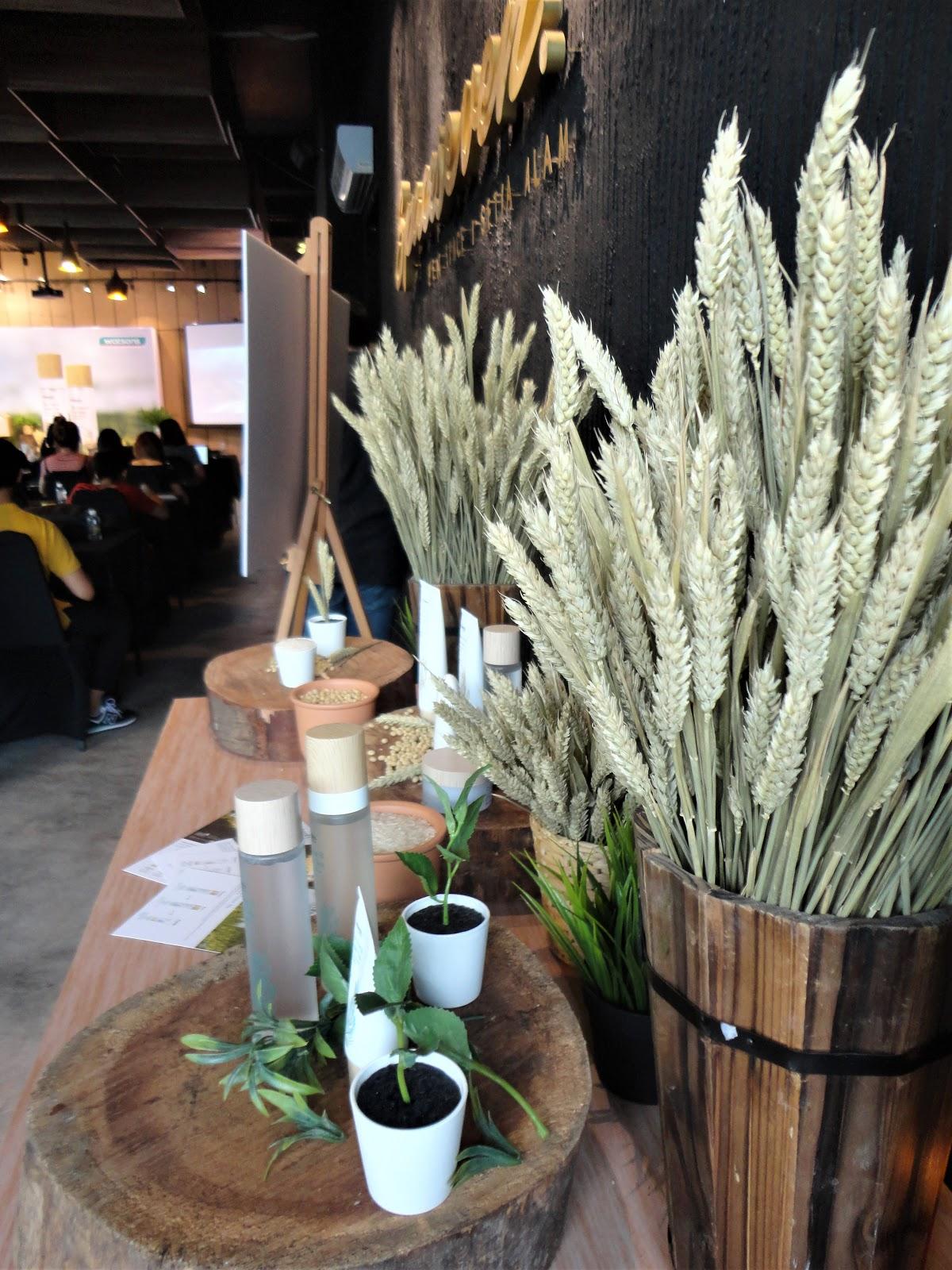 gyógynövényes fogyókúra tea watsons Napi 1500 kaland a fogyáshoz