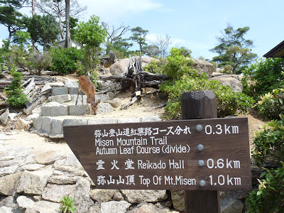 獅子岩駅では鹿の出迎え