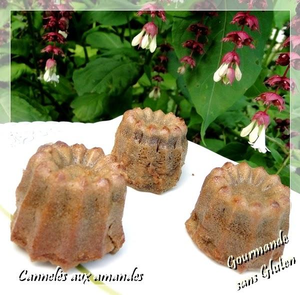 http://gourmandesansgluten.blogspot.fr/2014/08/canneles-aux-amandes-sans-gluten-et.html