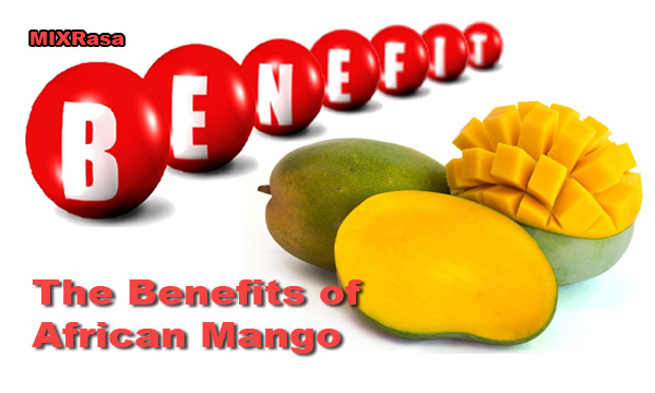 Benefits Of African Mango Fruit For Your Health Mix Rasa