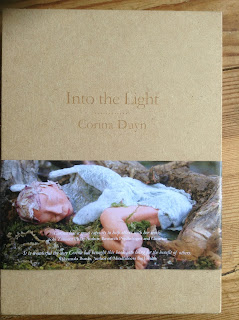 book cover of Into the Light  book in a box by Corina Duyn