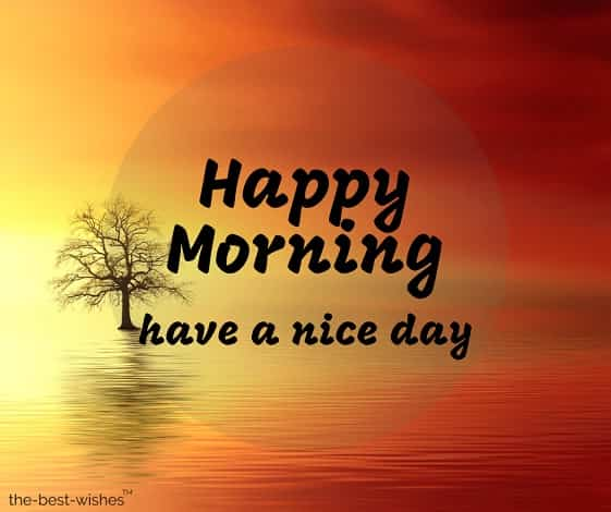 happy morning have a nice day