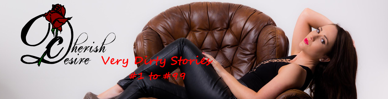 Very Dirty Stories #1 to #99, Max D, erotica