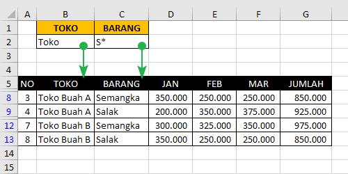 Kriteria Range Pada Advanced Filter Excel 3