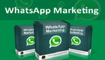 Manfaatkan WhatsApp Agar Bisnis anda Cepat Berkembang
