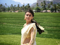 Hansika Motwani Latest Photo Shoot HeyAndhra