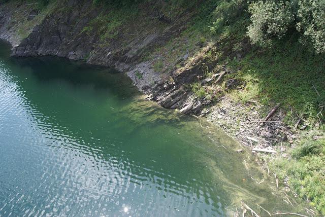 Ein steiles Ufer aus Stein. Bewachsen ist es mit Bäumen. Im Wasser liegen vereinzelte große Steine