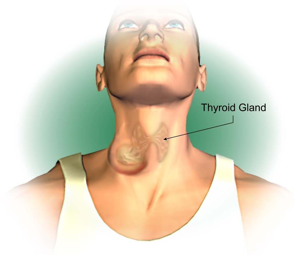 Promoter Blogger Symptoms Of Thyroid Cancer