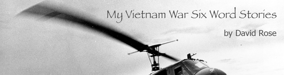 My Vietnam War Six Word Stories