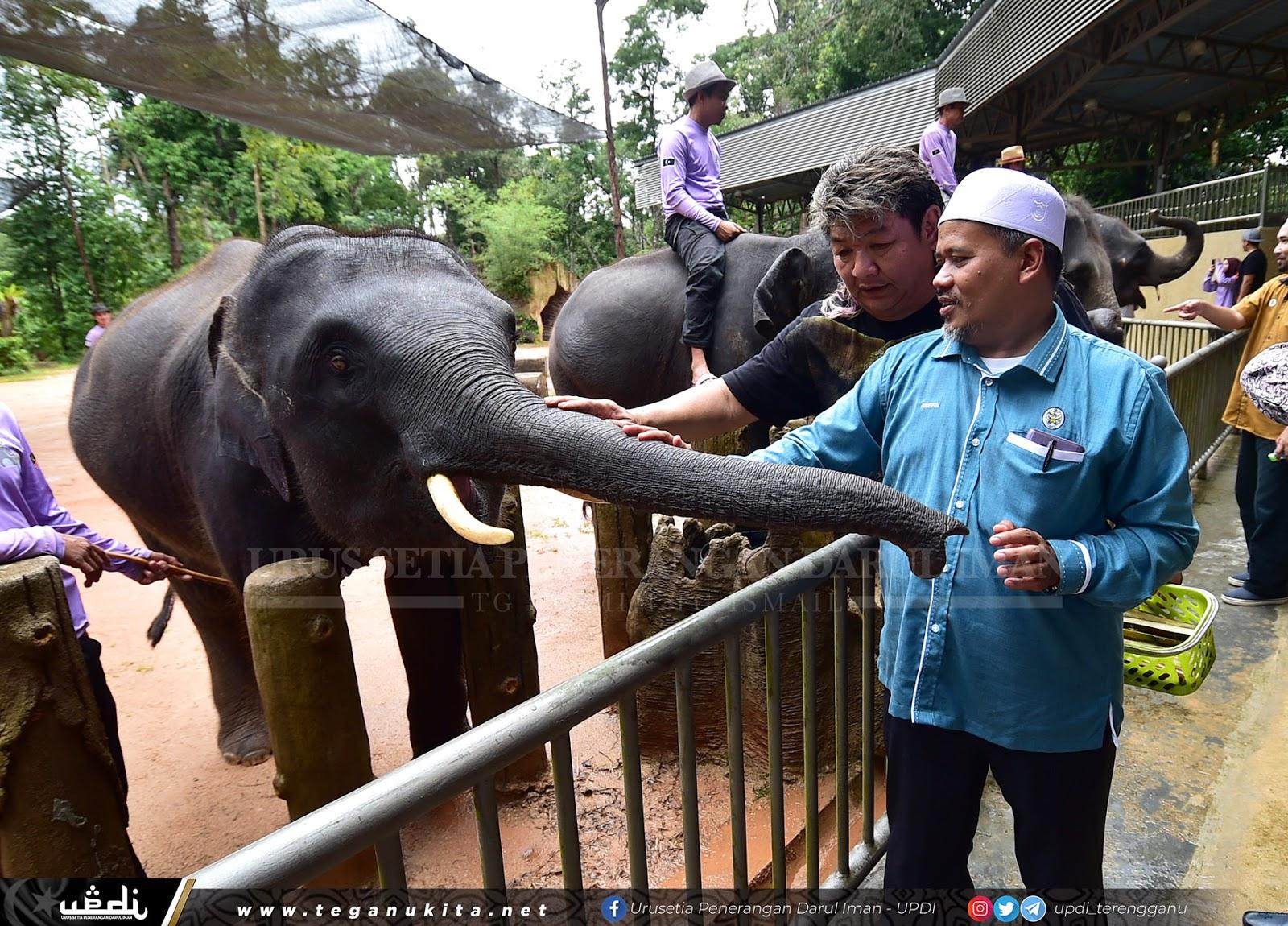 Diskaun Harga Tiket Perkampungan Konservasi Gajah Kenyir Jun Ini