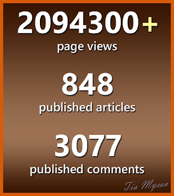 Page views - Tia Mysoa