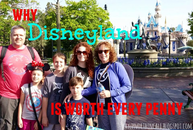 Great post about why Disneyland is worth every penny  www.wayupnorthincali.blogspot.com