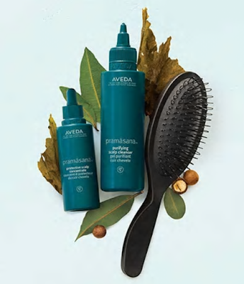 Aveda Pramāsana Scalp Care - the root of beautiful hair!