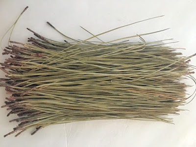 finished Glycerin bath solution for pine needles