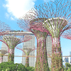 Kegiatan Tempat Wisata Murah Di Singapore Tak Perlu Bayar Hemat Budget Travelingmu