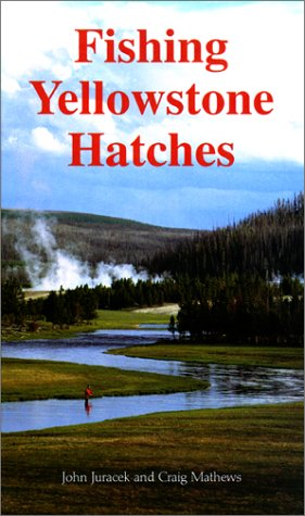 Fishing Yellowstone Hatches