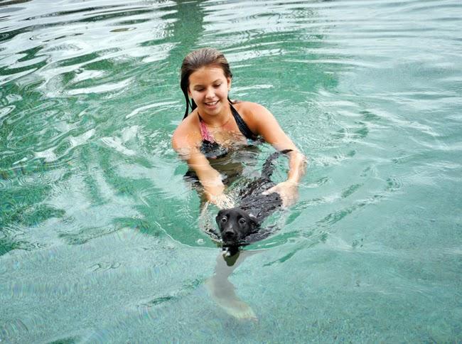 Hydroterapia dla psów