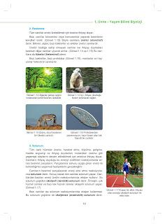 9. Sınıf Biyoloji Ders Kitabı Cevapları Netbil Yayınları Sayfa 19