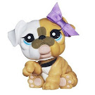 Littlest Pet Shop Mommy and Baby Bulldog (#3587) Pet