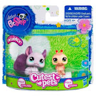 Littlest Pet Shop Pet Pairs Chinchilla (#2415) Pet