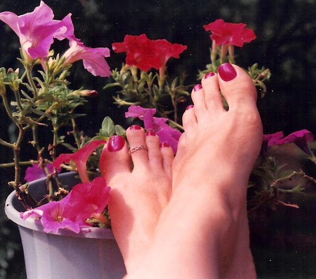bright purple toes and petunias