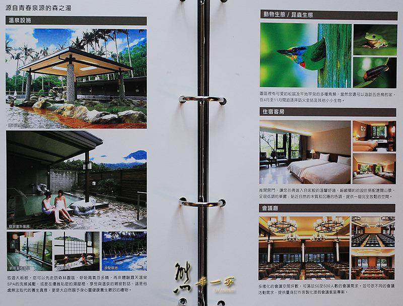 北台灣環境最讚的度假勝地|大板根森林溫泉渡假村|豪華景觀客房