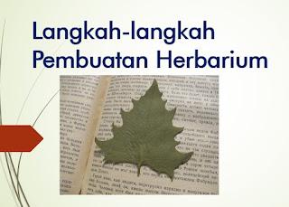 Langkah-langkah Pembuatan Herbarium