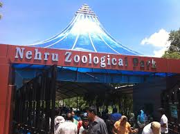 Nehru Zoological Park,zoo park hyderabad,tourist places in hyderaba