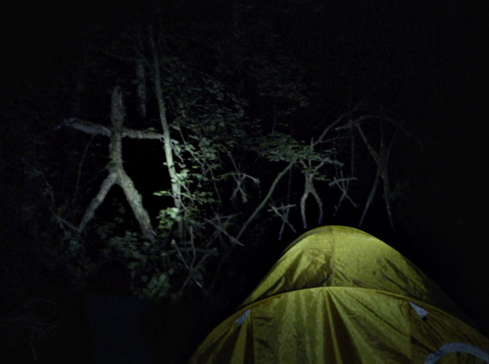 a review of the blair witch project The blair witch project directed by: eduardo sánchez, daniel myrick starring:  joshua leonard, michael c williams, heather donahue genres: found.